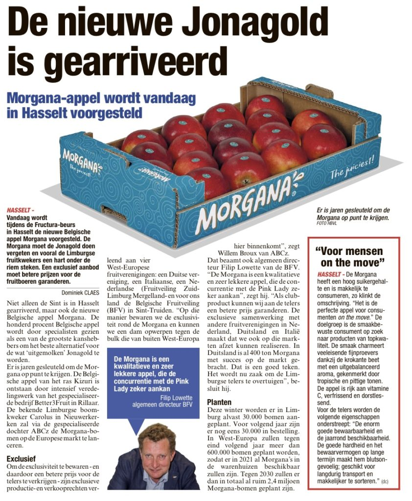 morgana fructura beurs hasselt