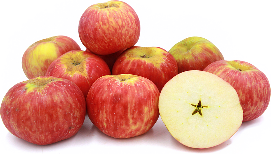 red gravenstein apple carolus