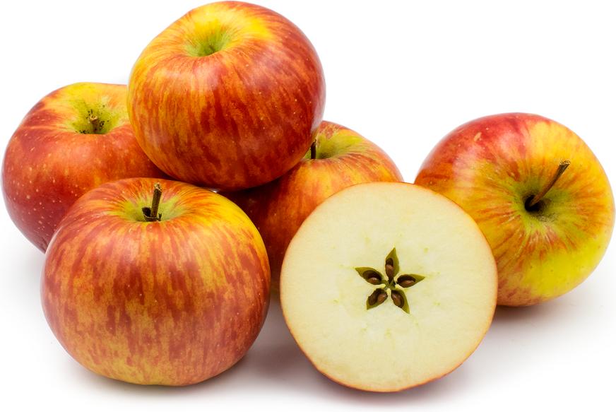 rubin apple carolus